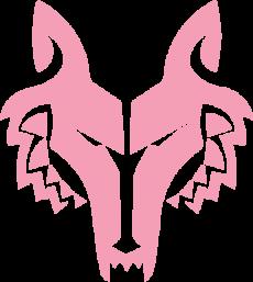 Pink Wolf Bike Odyssey